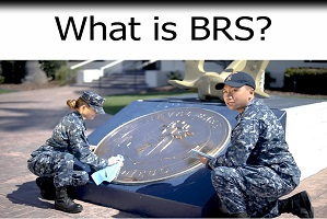 What Is BRS?
